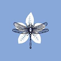 Logo Harrington