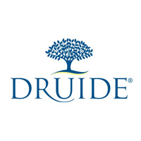 Logo Boutique DRUIDE