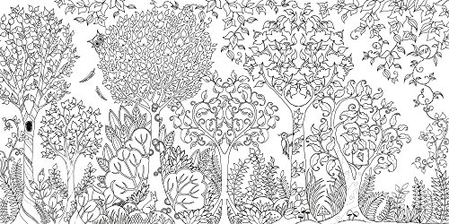 Coloriage Anti Stress Magazine.Coloriage Anti Stress Foret Enchantee Idee Cadeau Quebec