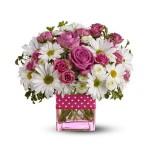 Marguerites et roses