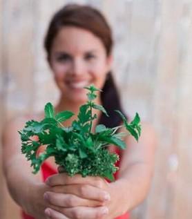 Menu santé – Les Passions de Julie