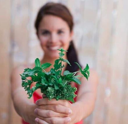Cliquez ici pour acheter Menu santé – Les Passions de Julie