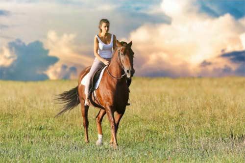 Cliquez ici pour acheter Forfait – Ranch Massif du Sud