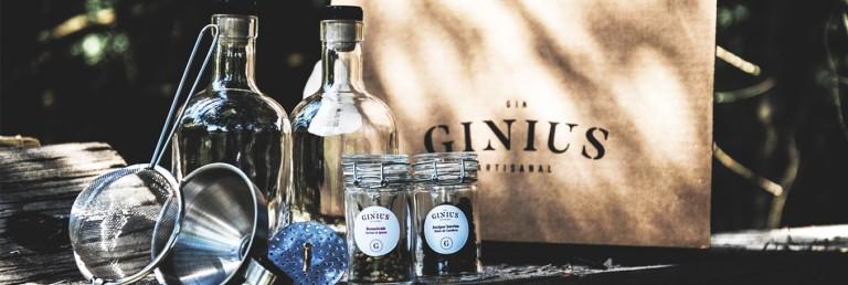 Faire son gin maison avec Ginius