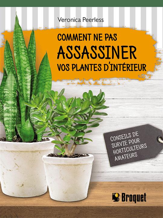 Comment ne pas assassiner vos plantes d'intéreur