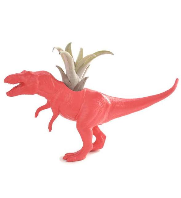 T-Rex rose avec plante