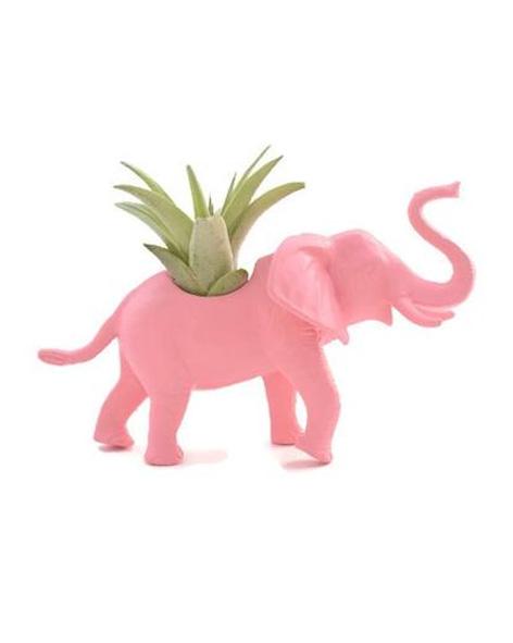 Éléphant rose pâle avec plante