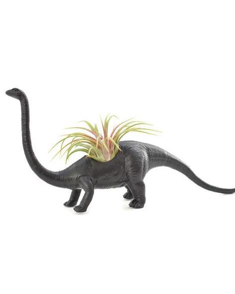 Diplodocus noir avec plante