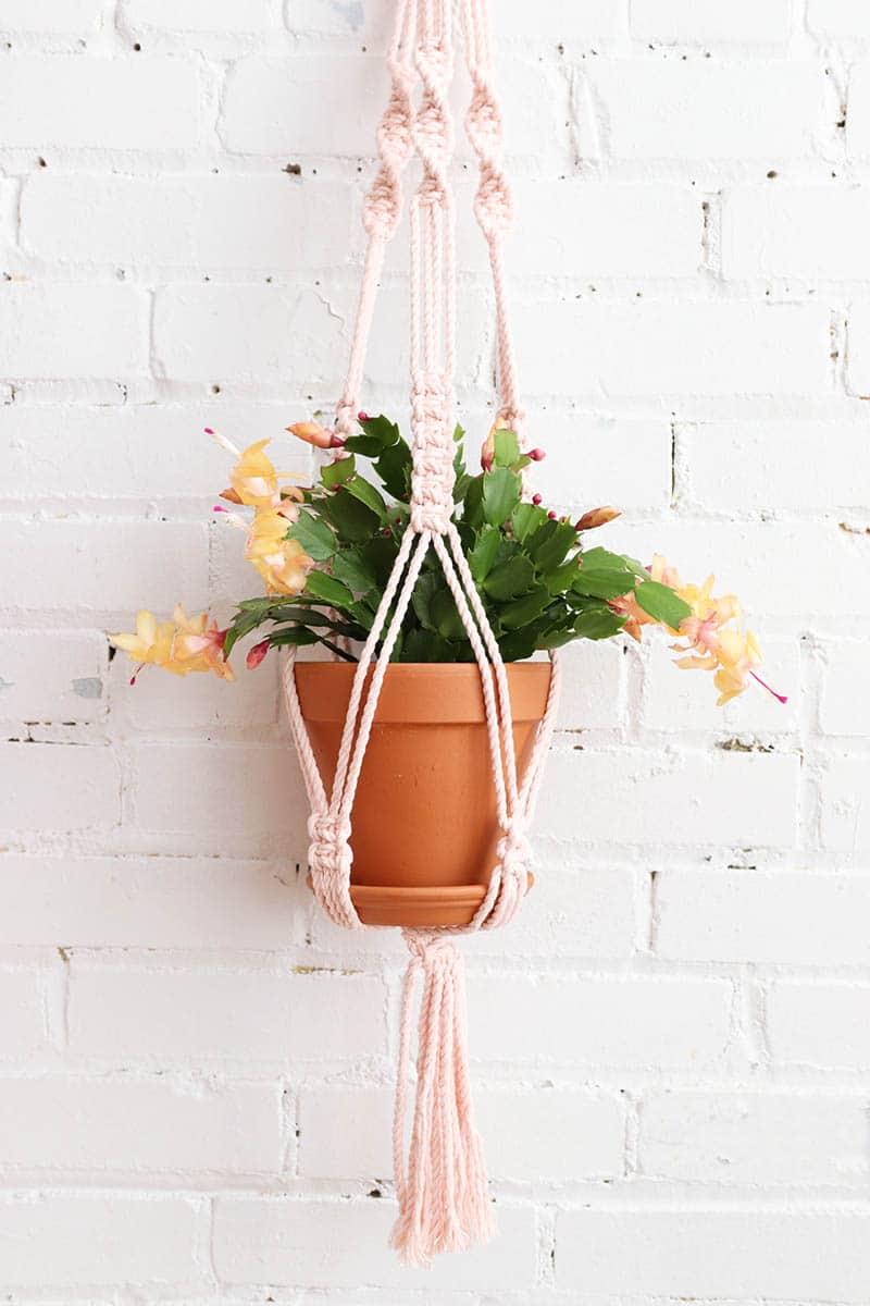 Cliquez ici pour acheter Jardinière en macramé rose