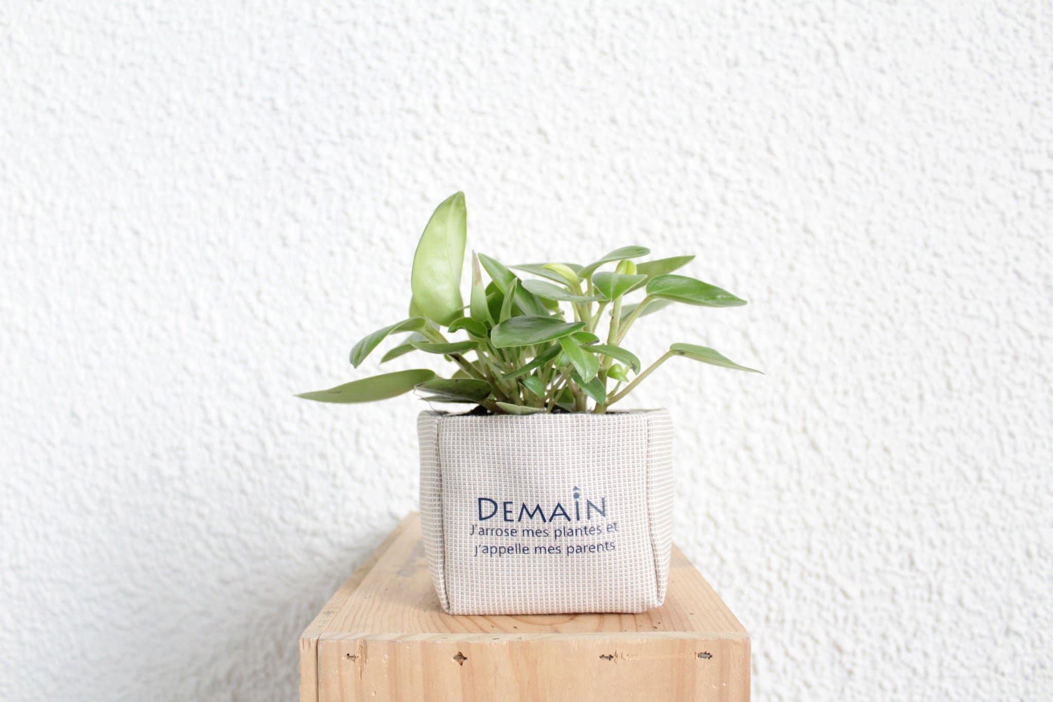 Cliquez ici pour acheter Pot en géotextile – Demain, j'arrose mes plantes et…