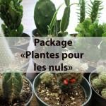 Ensemble de plantes