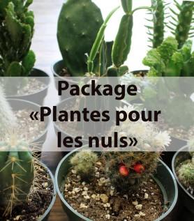Ensemble de plantes «Pour les nuls»!