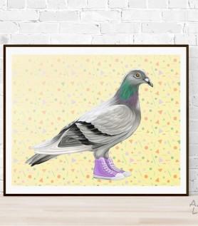 Affiche – Pigeon en Converse