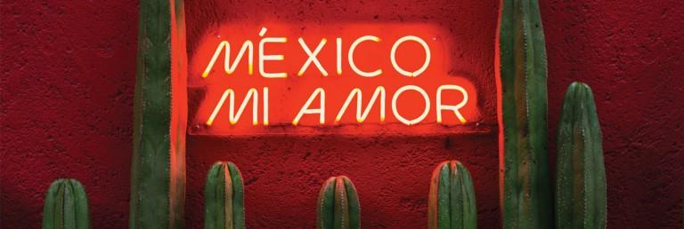 Idées de déco - Thème du Mexique