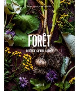 Forêt – Identifier, cueillir & cuisiner