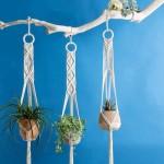 3 supports en macramé pour plantes