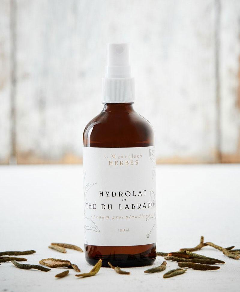 Cliquez ici pour acheter Hydrolat – Thé du Labrador
