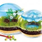 Écosystème pour enfant