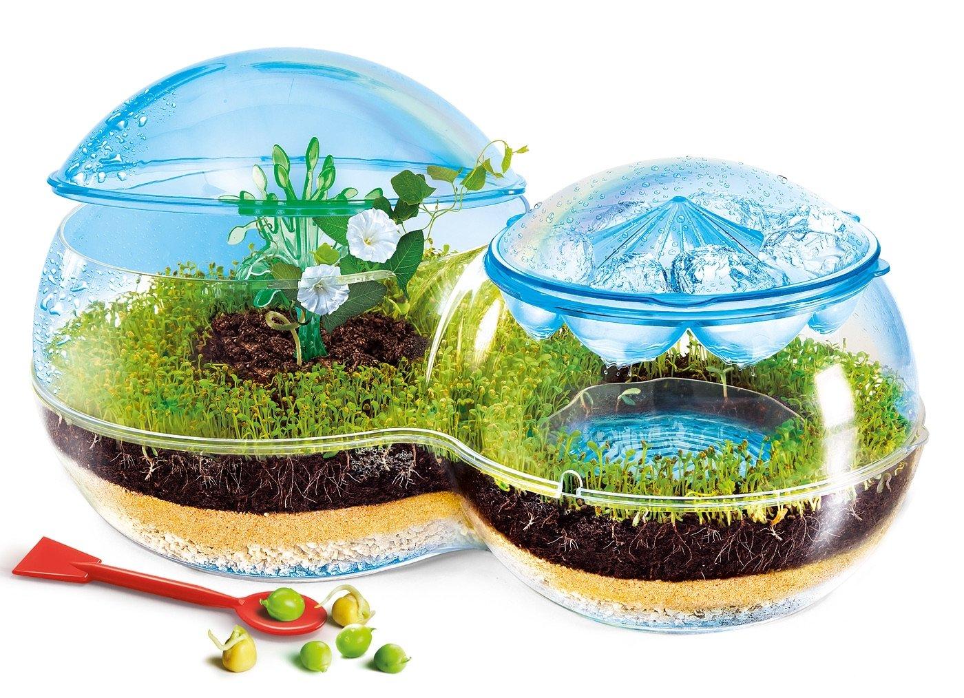 Cliquez ici pour acheter Écosystème pour enfant