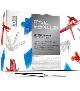 Culture de cristaux R-Évolution